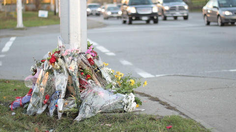 Traffic Passes By Roadside Memorial Footage