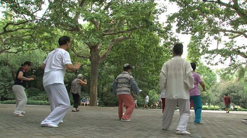 Tai Chi in Zhongshan park Stock Video Footage