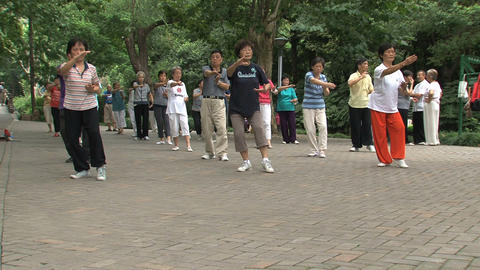 Group people doing Tai Chi zoom out Stock Video Footage