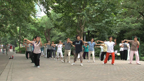Group people doing Tai Chi Stock Video Footage