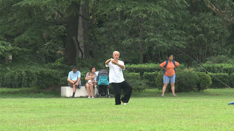 Elderly man doing Tai Chi Stock Video Footage