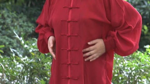 Hands Tai Chi Stock Video Footage
