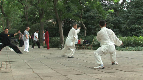Kung fu in Zhongshan park, Shanghai Stock Video Footage