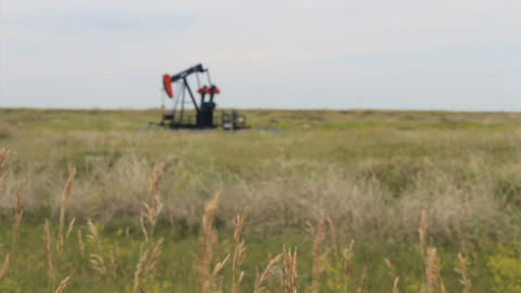 Tall Prairie Grass With Oil Pump In The Background Stock Video Footage