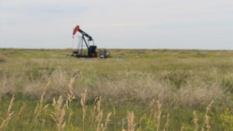 Tall Prairie Grass With Oil Pump In The Background Footage