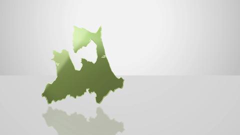CG Japan Map B 0