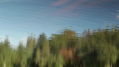 forest and blue sky reflection in the river Footage