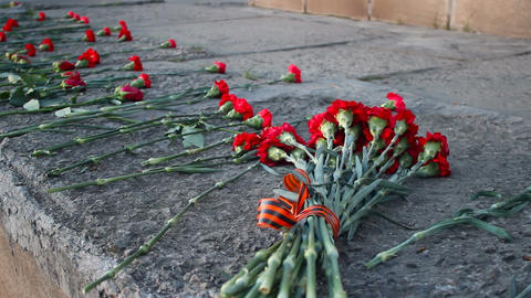 Flowers over the memorial Footage