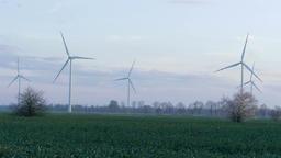 Wind farm. Renewable energy sources, Live Action