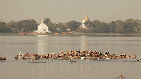 Amarapura Temples Birds Footage