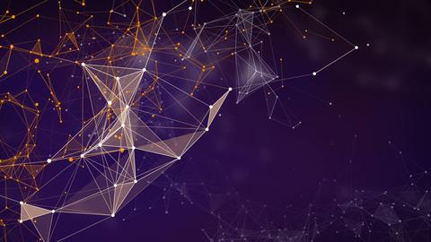 Plexus Connection 1