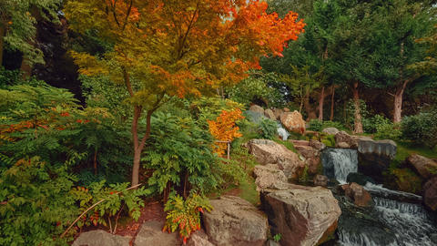 Wide angle pan showing exquisite details of lush Japanese gardens including a wa Footage