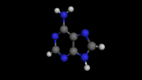 adenine molecule model rotating Animation
