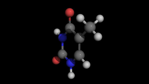 thymine molecule model rotating Animation