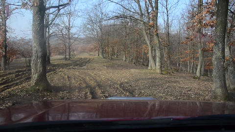 By car on muddy roads of a leafless forest in the end of autumn 26 Footage