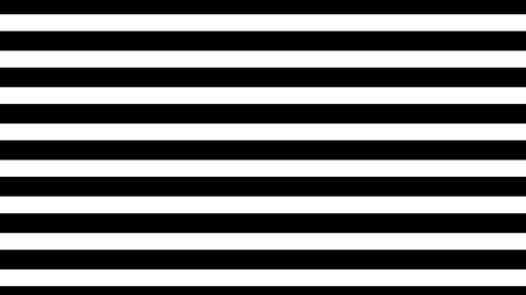 Stripe up CG動画