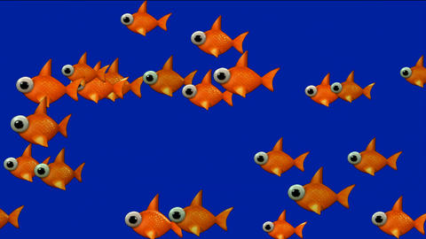 cartoon goldfish Stock Video Footage