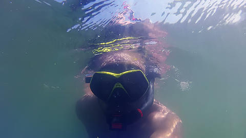 Snorkeling and seaweed Stock Video Footage