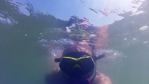 Snorkeling and seaweed Stock Video Footage