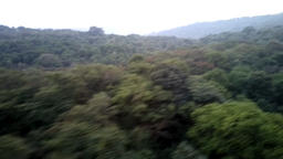 Deccan plateau 3, India, in winter. Eternal greenery Live Action