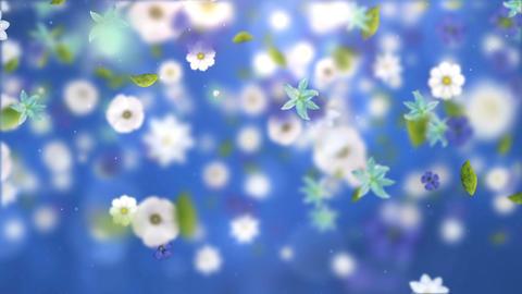 Falling Flowers 0