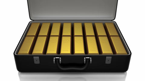 Suitcase Animation