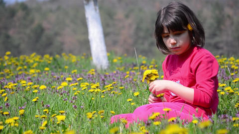 Girl who picked a bouquet of dandelions and now look at a bee buzzing near her 8 Footage