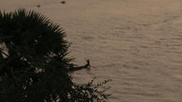 Silhouette of african sailors rowing by the niger river Footage