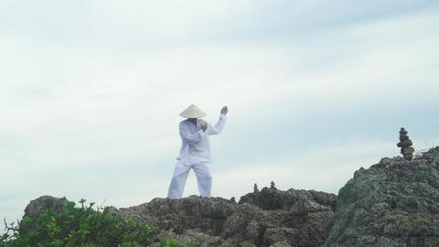 Shaolin Warrior Wu Shoo Practice Martial Art Footage