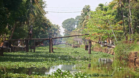 Motion along River with Water-plants to Drawbridge in Tropics Footage