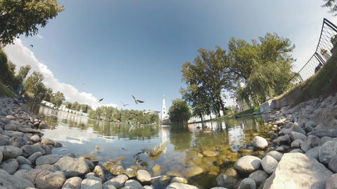 Spherical Panorama Tiny Planet. Gulls in a pond Monastery Filmmaterial