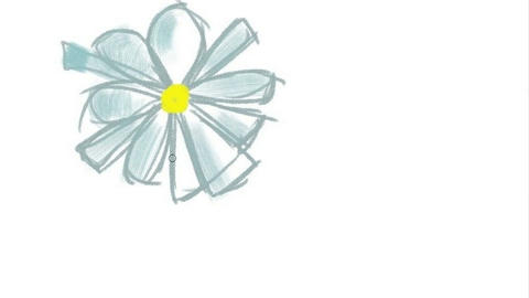 Digital drawing of a flower, Timelapse Stock Video Footage