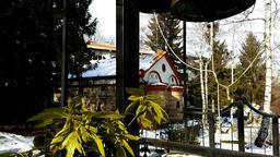 Dragalevsky Monastery, a Bulgarian Orthodox Church, bells in Winter Footage