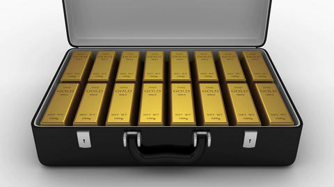 Animated Suitcase with Gold Bars Animation