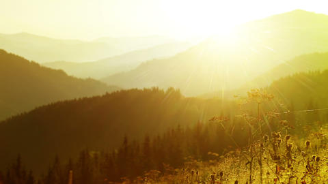 Morning in mountains Stock Video Footage