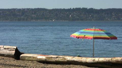 Beach Scene Stock Video Footage