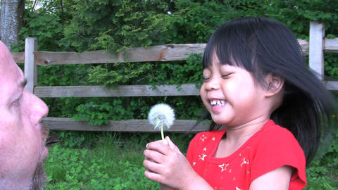 Dandelion Fun Stock Video Footage