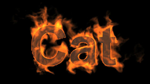 flame cat word,fire text Stock Video Footage