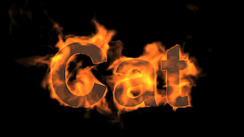 flame cat word,fire text Animation