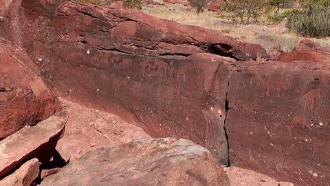 twyfelfontein ancient rock engravings Footage