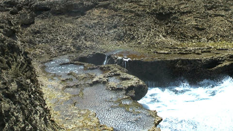 blowhole in curacao Footage