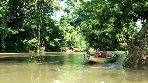 gliding with a boat through rainforest in costa rica Stock Video Footage