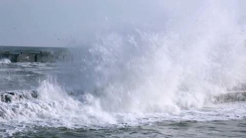 Breakwater Stock Video Footage