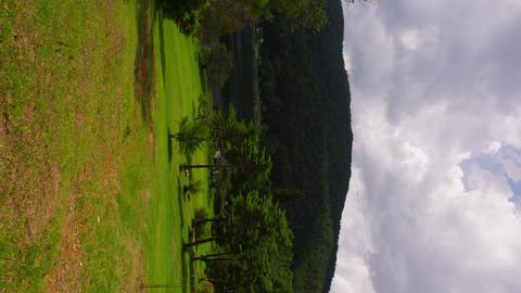 長野県 聖高原 Footage