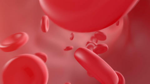 Blood flowing through the arteries Animation