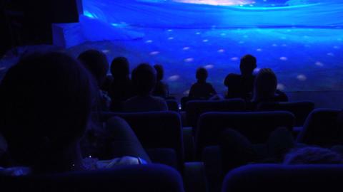 Theatre 2 Footage