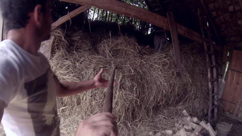 Man leads a pile of hay with a fork and put in a barn 07b Footage