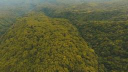 Aerial view evening rainforest. Camiguin island Philippines Footage