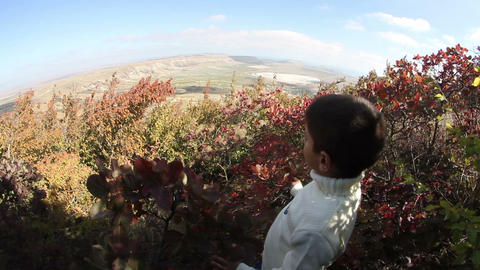 boy stands above the valley in the bushes of wild rose Live Action
