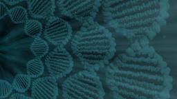 DNA Underwater Animation